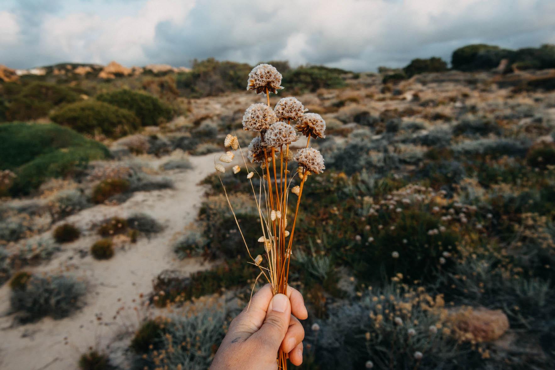 profumi-di-mare-francesca-schmitt-photography
